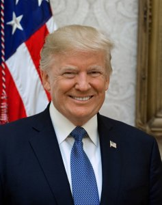 President Donald J. Trump official photo