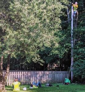 Electric line repair crew