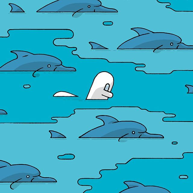 #weekend #dolphins #samuel #waterworld #justdoingit