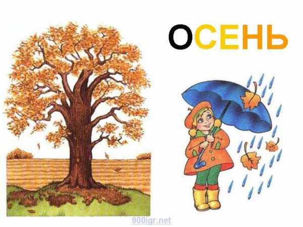 Деревья осенью картинки для детского сада – Картинки для ...