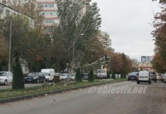 slobozia - copac cazut peste masina- 05
