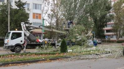 slobozia - copac cazut peste masina- 06