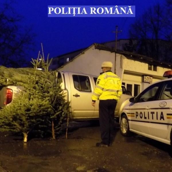 Acțiuni poliția economică - Slobozia, Fetești, Țăndărei, Albești, Scânteia