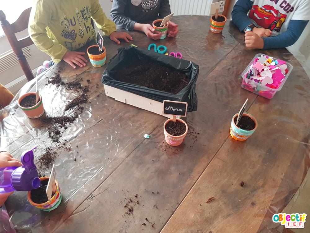 Journal de pousse ressources gratuites pour faire un atelier plantation tournesol Objectif IEF