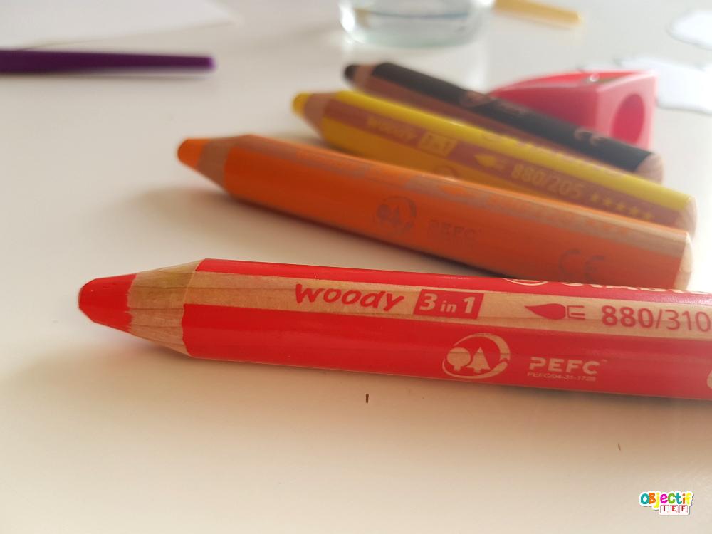 woody 3in1 stabilo écolo zéro déchet ief instruction en famille objectif ief aquarelle crayon vitres