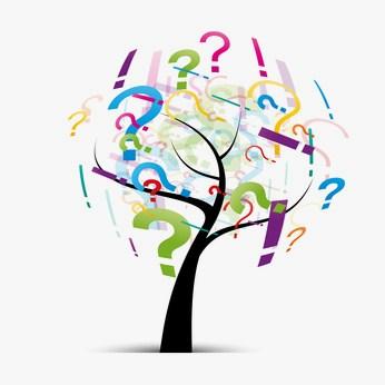 quelles questions vous posez-vous