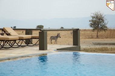 Construire son safari prive sur mesure africain en Tanzanie avec Objectif Tanzania