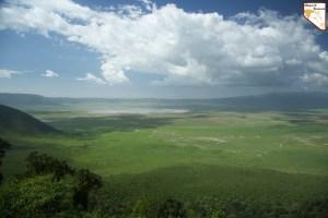 Safari prive a la journee excursion en Tanzanie - Safari prive de luxe sur mesure avec Objectif Tanzania