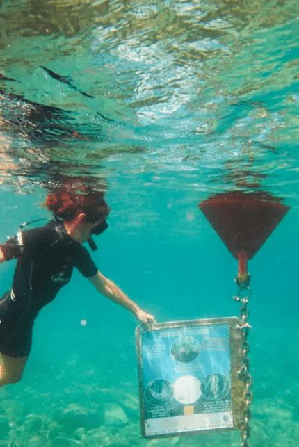 Bucket List activites france - Snorkeling St Cyprien