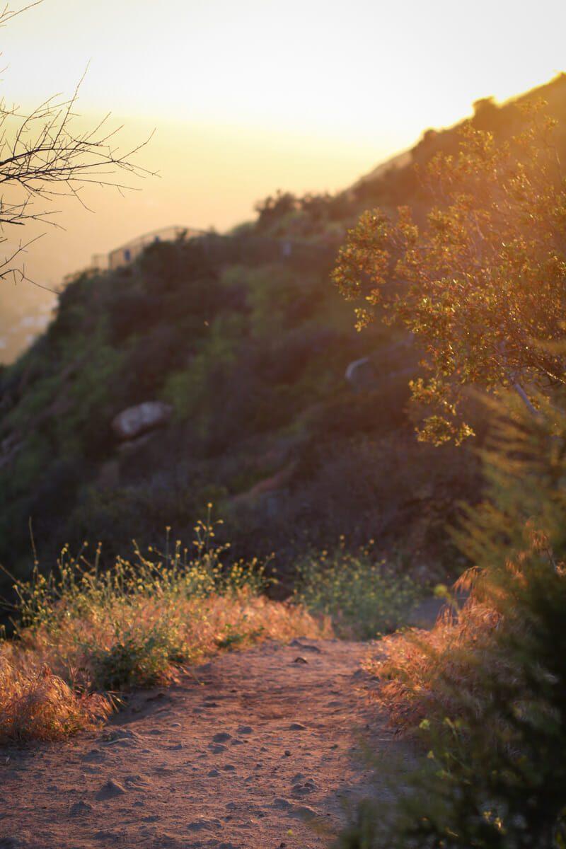 Hollywood Sunset 3