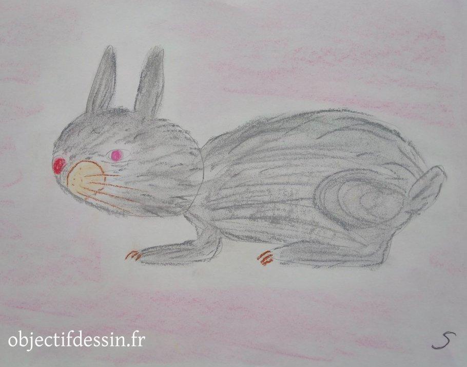 dessin lapin S