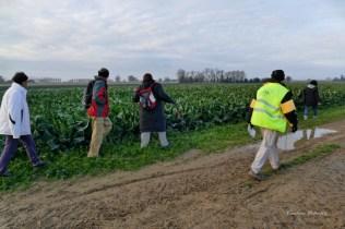 2017 12 03 Randonneurs du Pays de DURAS à BIRAC SUR TREC (25)_DxO_DxO 1