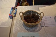Truffe St Alvére (22)_DxO_GFDXO