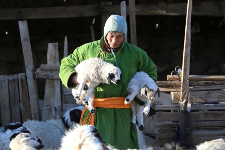 Nomadfamily7 - Mongolie