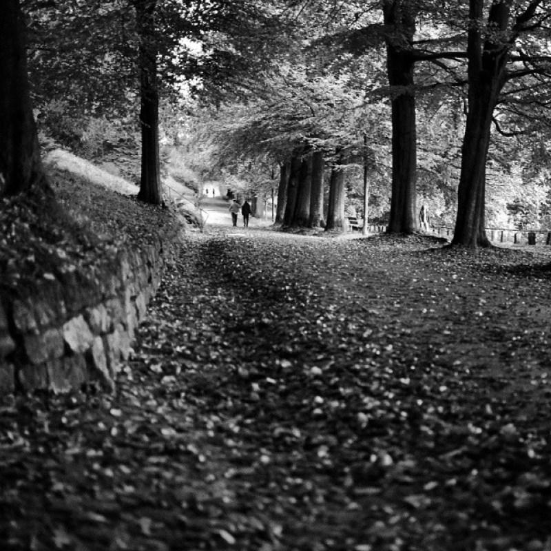 #Herbst am #Lousberg, #Aachen Instagram