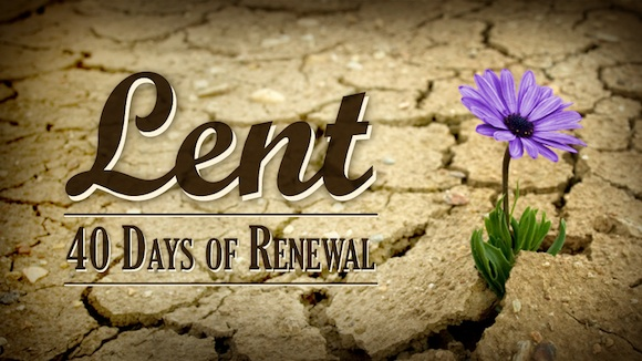 Daily lenten reflections written by fr ron rolheiser omi missionary oblates of mary immaculate - Wallpaper for lent season ...