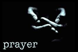 Dohle-prayer-web