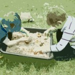 Dohle-Sandbox-web