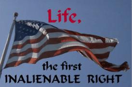 vote-pro-life-005-web