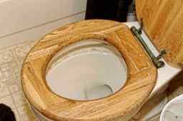 Disgusting Toilet