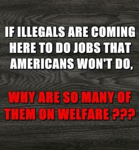 Illegal Welfare Meme