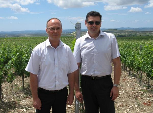 Željko Pavlović, voditelj benkovačkoga vinogradarstva, i Dubravko Ćuk, glavni enolog Badela 1862 (Snimila Božica Brkan / Acumen)