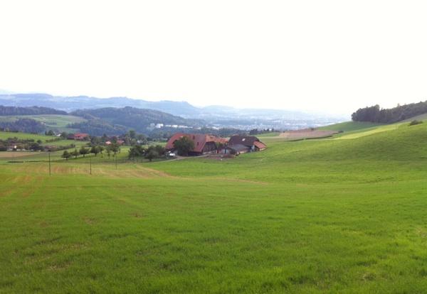 Seoski krajolik iz okolice Berna (Snimio Josip Kraljičković)