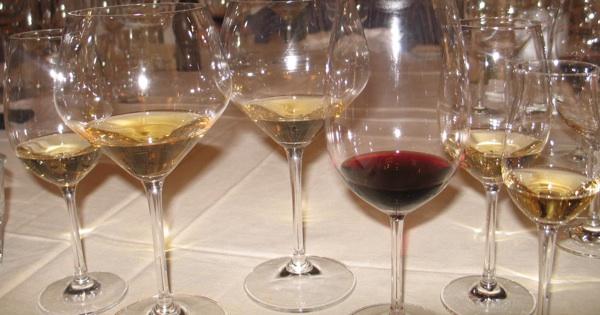 Za različite prilike različita vina (Snimila Božica Brkan / Oblizeki)