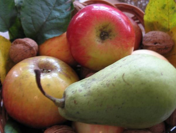 Ove godine jabuka, a iduće možda zadana kruška? (Snimila Božica Brkan / Acumen)