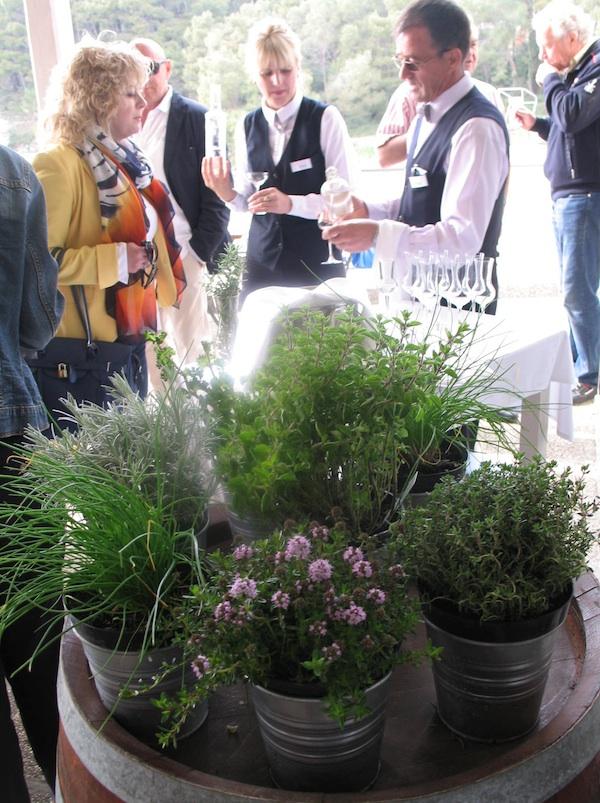 Dobrodošlica u restoran Veli žal: na bačvi začinsko bilje u loncima (smimio Miljenko Brezak / Oblizeki)