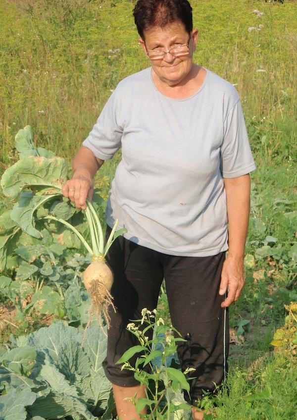 Gospođa Mirjana pleše sama uzgaja povrće za svoju kuhinju, pa tako i korabu (Snimio Tibor Martan / Oblizeki)