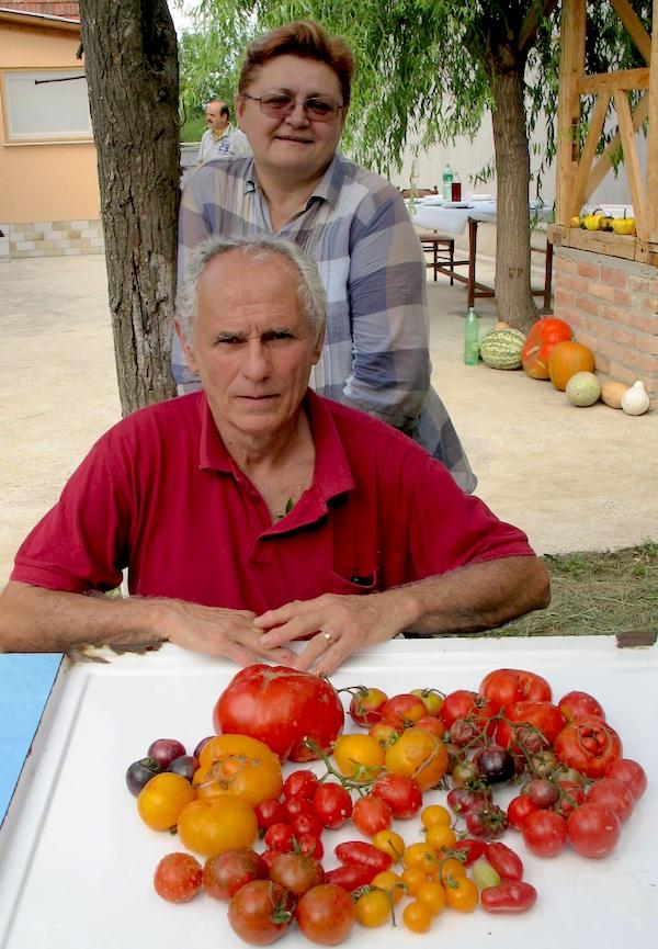 Urednica Oblizeka s Mićom Brkanovićem na njegovu imanju s rajčicama koje je uzgoji (Fotografija Miljenko Brezak / Oblizeki)