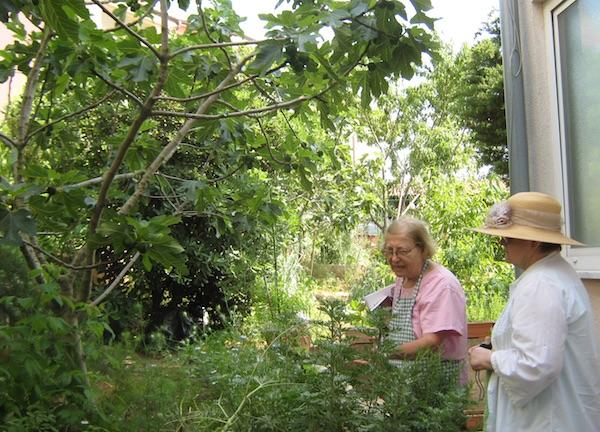 Zlata nanić i Božica Brkan u Zlatinoj krčkoj džungli (Fotografija Miljenko Brezak / Oblizeki)