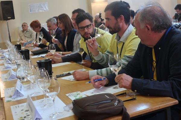 Ni ocjenjivanje nije prošlo bez žustrog razgovora: rasprava dvaju naraštaja vinara Kezelea, Janka i Drage (Fotografija Miljenko Brezak / Oblizeki)