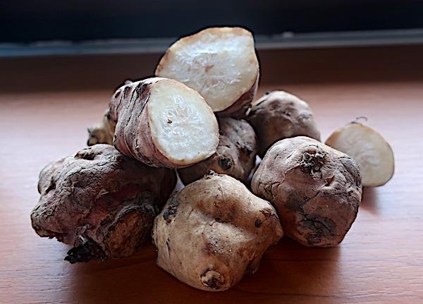 Gomolji čičoke (Fotografija Božica Brkan / Oblizeki)