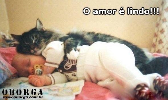 Amor e Lindo