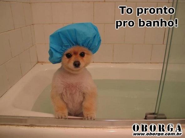 Pronto pro banho
