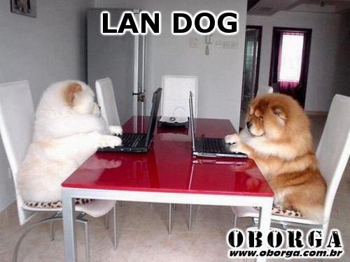 LanDog - LAN DOG
