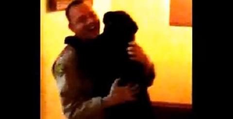 Pense em um cachorro feliz
