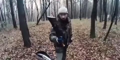 Treta Na Floresta