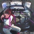 Mulher se solta das algemas, rouba carro da policia e só é detida após bater a viatura