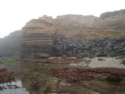Destroying the cliffs to save them, or is it to save the real estate above them?