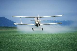 food Pesticides