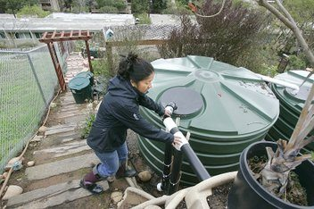 rainwater pt loman 01