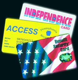 Access San Diego Food Stamps
