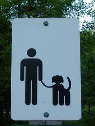 dog leash icon
