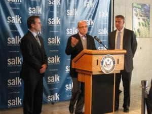 Salk Wahl
