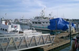Mitchs Seafood jc 02