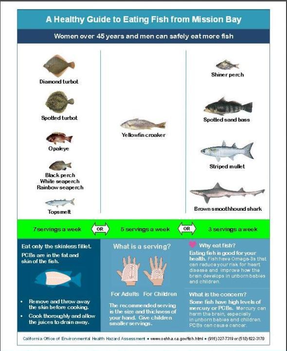 Mission Bay fish ok graphic