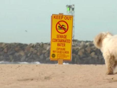 OB sewage DogBeach 12-4-13